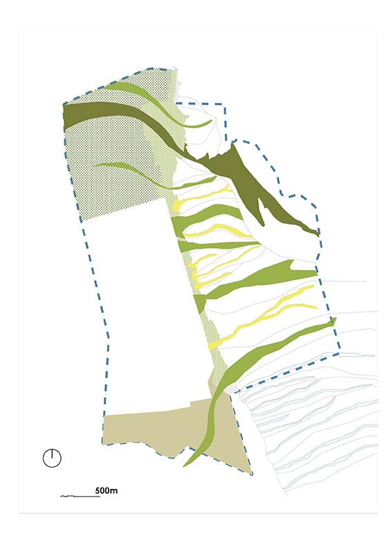La-vegetation-typologies