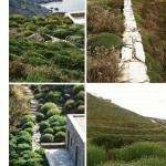 gardens that gently transition into the natural landscape by doxiadis+