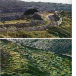 doxiadis+ stone walls and gentle transition techniques into the Greek landscape