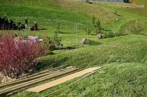 planting adds to the integration of the property into the natural alpine landscape
